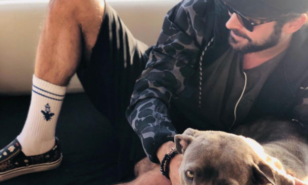 Zac Efron adoptó a una perrita y le salvó la vida