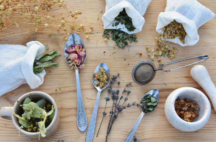 diferentes hierbas medicinales sobre la mesa