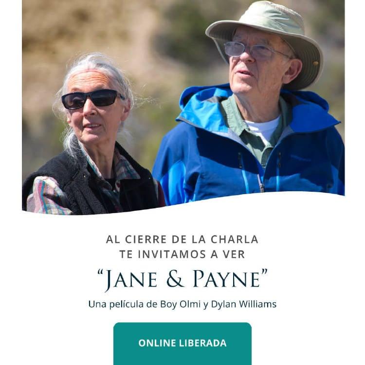 jane-payne