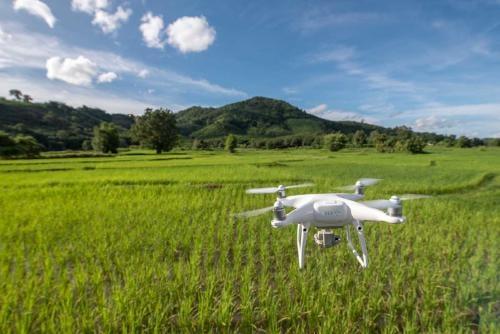 Drones para reforestar el planeta: plantarán mil millones de árboles para 2028
