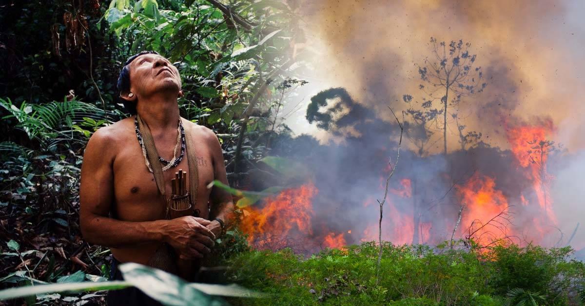 Incendios en el Amazonas: cómo sigue ardiendo el pulmón del planeta