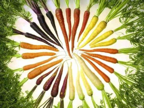 Propiedades vegetales por su color