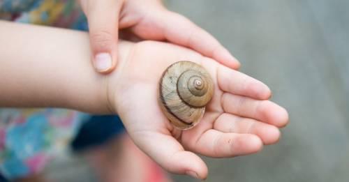 ¿Por qué los niños necesitan estar en contacto con la naturaleza?