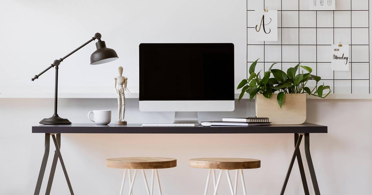 Conoce los beneficios de tener una planta en tu escritorio