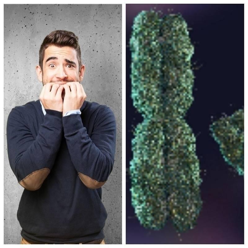 ¿No más hombres? Según la ciencia, el cromosoma Y desaparecerá tarde o tem..