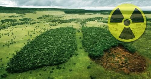 La mala calidad del aire, una crisis mundial