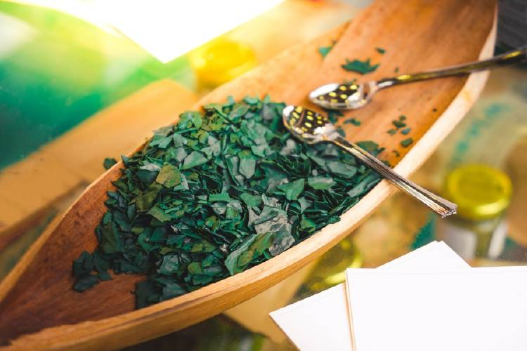 espirulina alga proteinas