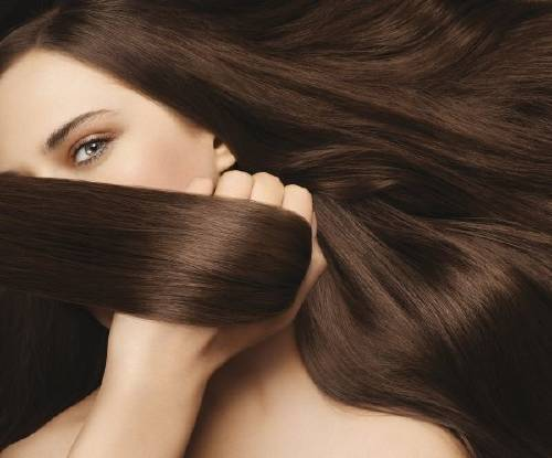 Recetas para tener el cabello sano | Bioguia