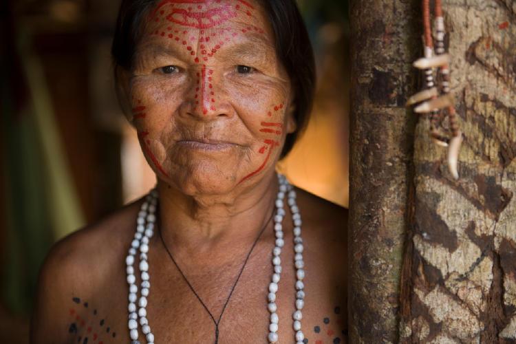 aborigen indigena amazonas