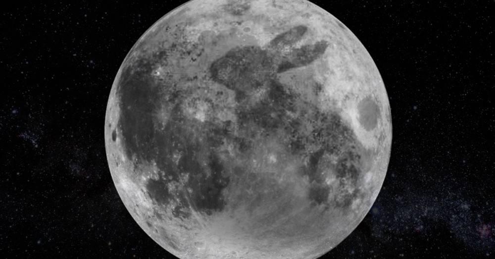Por qué hay un conejo en la luna? Una asombrosa leyenda maya | Bioguia
