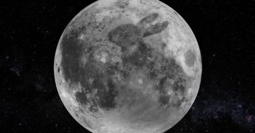 Resultado de imagen para el conejo de la luna