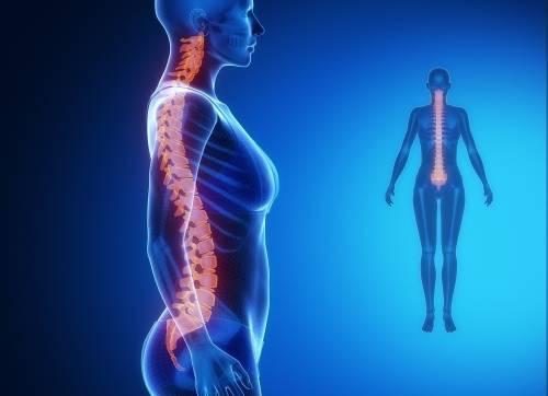 4 ejercicios fáciles para alinear la columna y aliviar tensiones