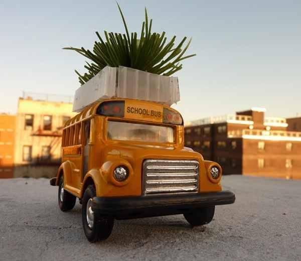 Autobuses Verdes
