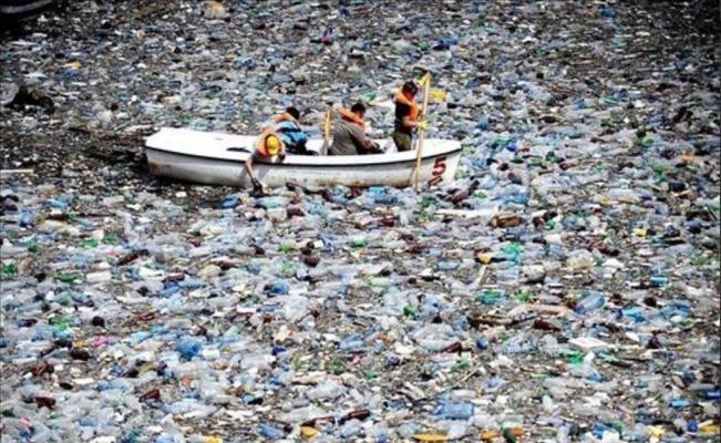 isla de plástico del pacífico