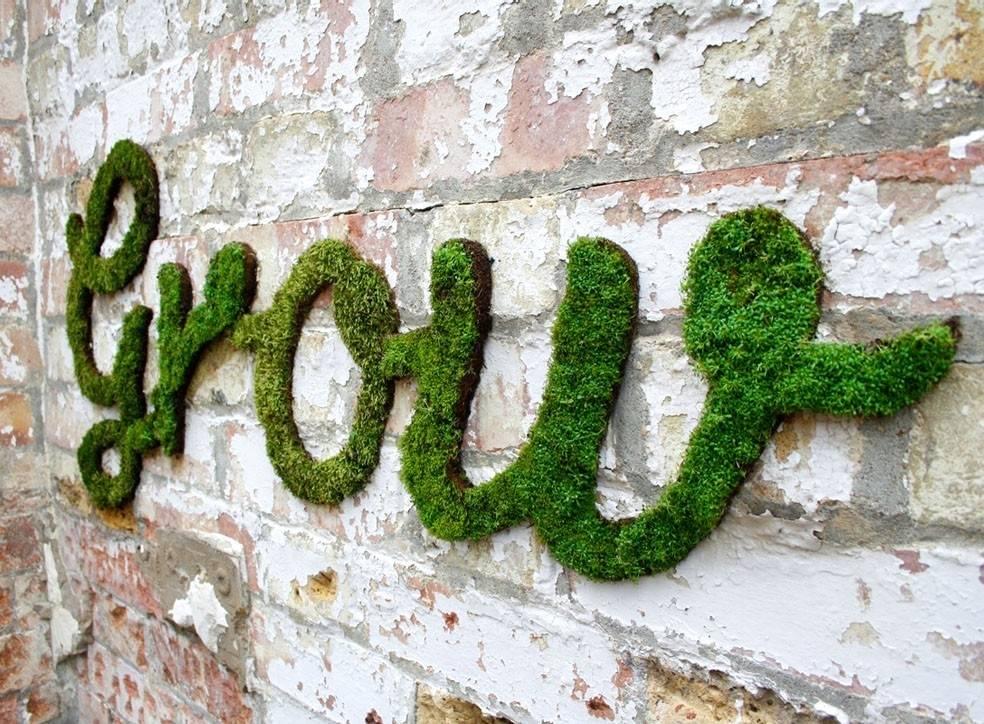 Crea graffitis vivos con musgo