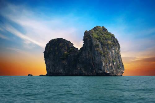 Tailandia: el cierre de parques naturales ayuda a regenerar la vida salvaje