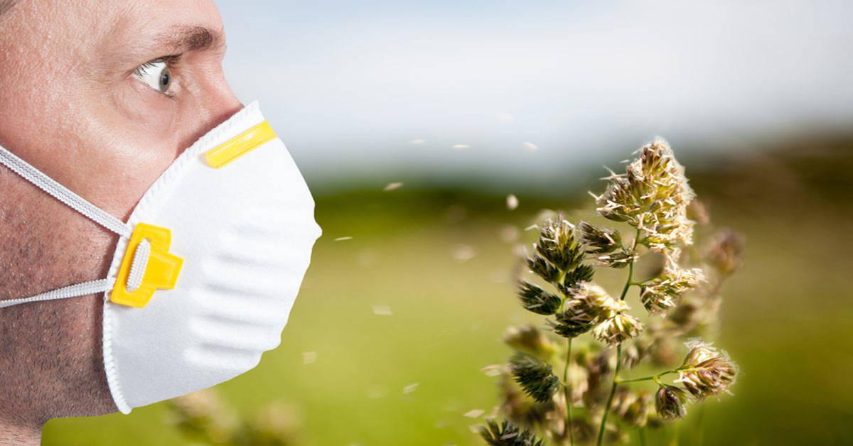 Por qué el cambio climático aumenta el riesgo de que padezcas alergias
