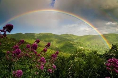 Esta mujer logró fotografiar el principio de un arcoiris y esto fue lo que en..