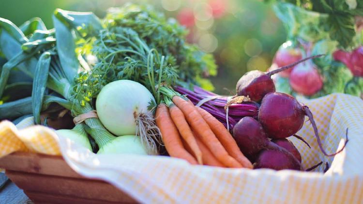 verduras y vegetales en una canasta