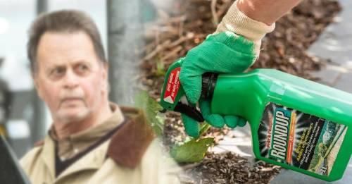 """Condenaron a Monsanto a pagar USD 81 millones por """"negligencia"""""""