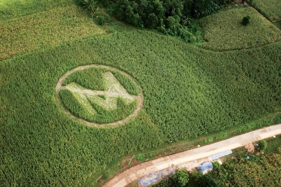 Gracias a millones de activistas en todo el mundo, Monsanto será llevada a ju..