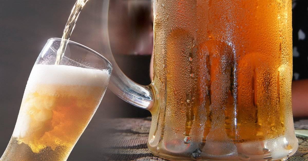 Este es el ingrediente 'secreto' de la cerveza que indigna a los vegetarianos