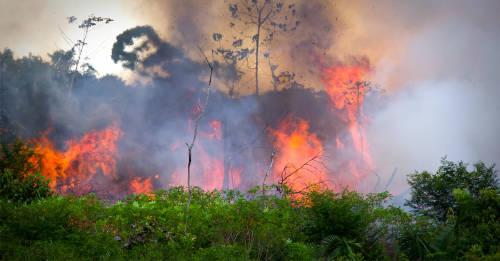 Lluvias torrenciales en el Amazonas y otras noticias falsas sobre los incendios