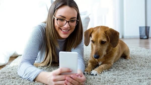 El estudio sugiere que muchas personas experimentan un apego significativo a sus mascotas / animales