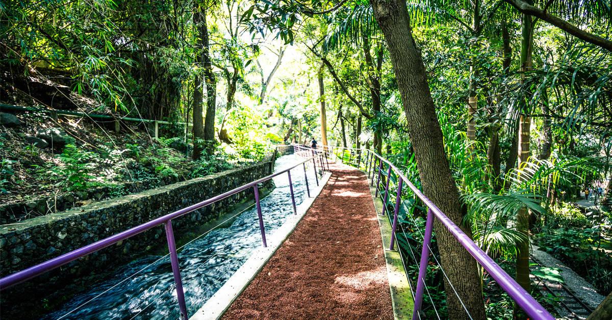 El Bosque de Chapultepec fue declarado el mejor parque urbano del mundo