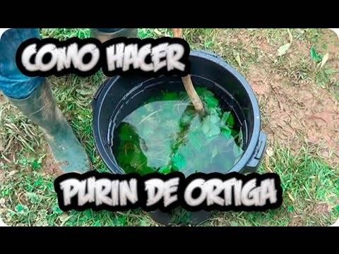 Purin de Ortiga gran Fertilizante y fungicida