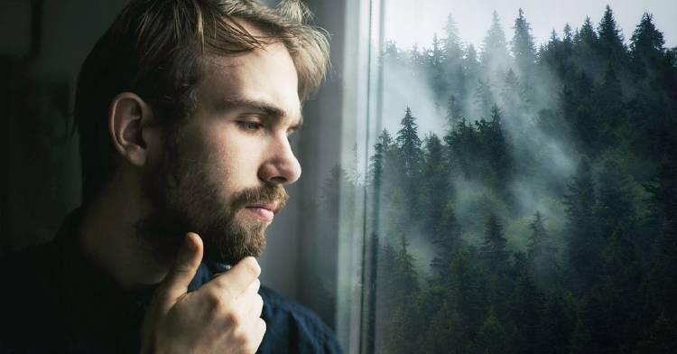 test-psicologico-bosque-estado-emocional
