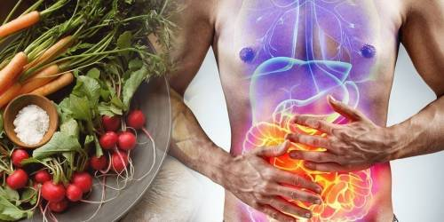 ¿Cuál es la alimentación más adecuada para tu cuerpo?