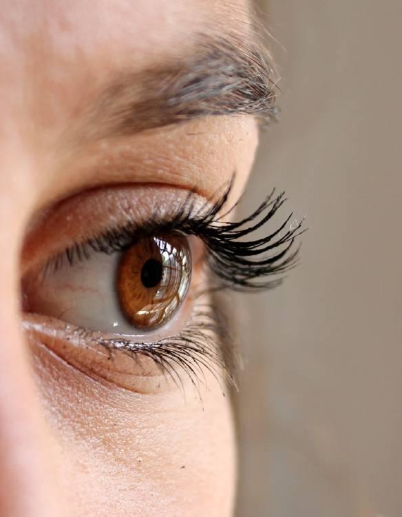 percepción ojo