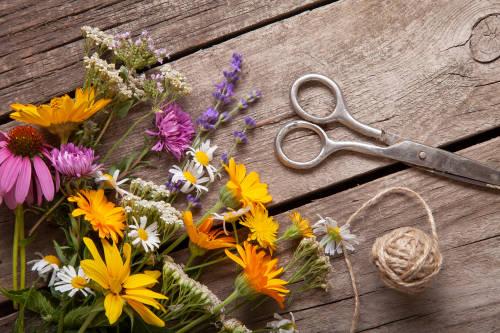 Decoración navideña: paso a paso para hacer una corona con flores de tu jardín
