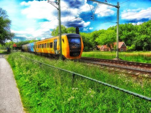 Gran Bretaña: crean un tren sustentable que obtendrá energía a partir de residuo