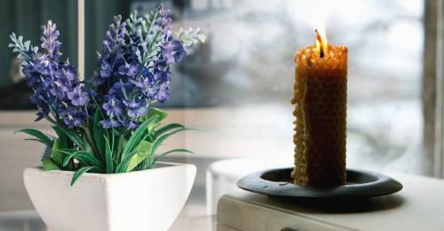 5 formas de limpiar el aire de tu hogar de manera natural