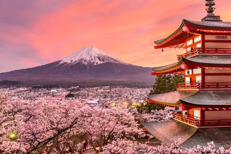 Edificio con arquitectura japnesa, valle lleno de arboles de cerezos y al fondo un montaña con nieve