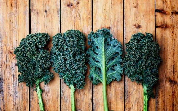 sals-kale-salad-recipe-ftr