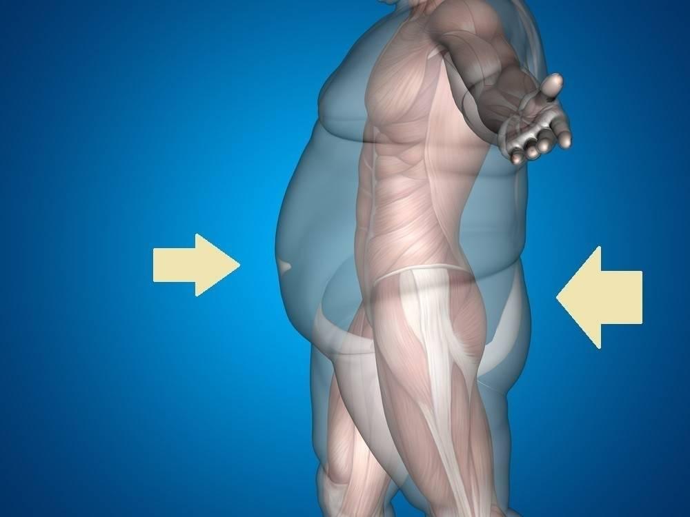 Rutina sencilla de squats para transformar glúteos, abdomen y todo el cuerpo ..