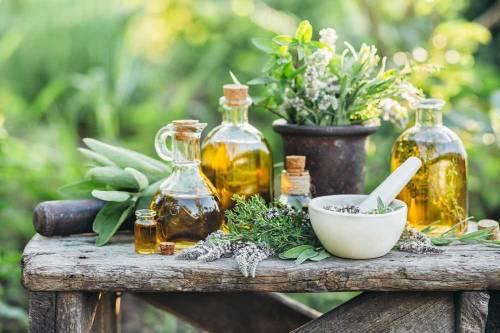 136 plantas medicinales y sus usos para la salud |  Bioguia |  Bioguía
