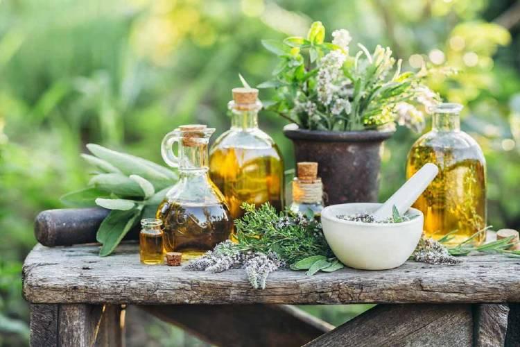 plantas medicinales aceites esenciales y elementos de trabajo