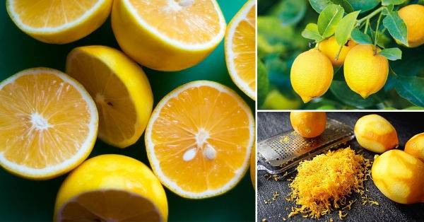 Usa este truco para aprovechar al máximo las propiedades del limón
