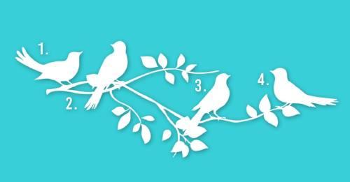 Escoge un pájaro y averigua cuál podría ser tu propósito en la vida