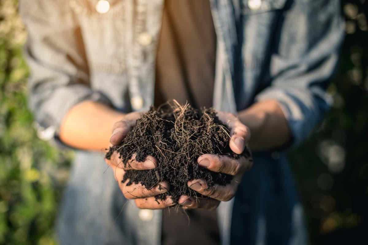 15 tips para hacer compost rápido