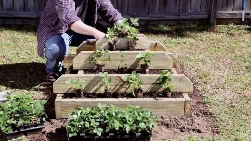 Cómo construir una pirámide para plantar en tu jardín