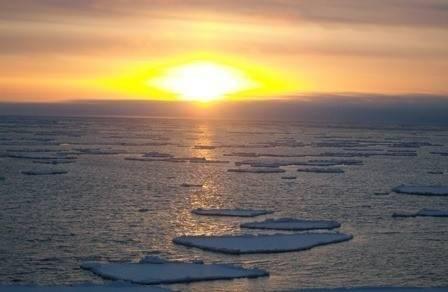 El mar de Bering ya no tiene hielo: ¡Esto no es normal!