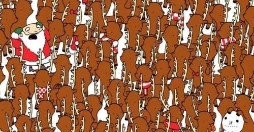 ¿Dónde está el oso? El desafío navideño que pocos descifran