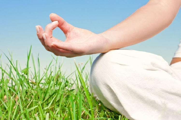 Biodescodificación: conoce tus emociones para sanar tu cuerpo