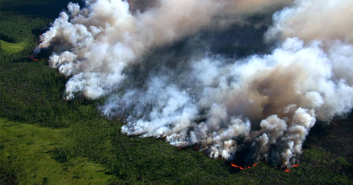 Amazonas: el fuego sigue fuera de control y ya arrasó 2 millones de hectáreas en