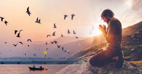 Formas en el que el Universo puede comunicarse contigo a través de los pájaros
